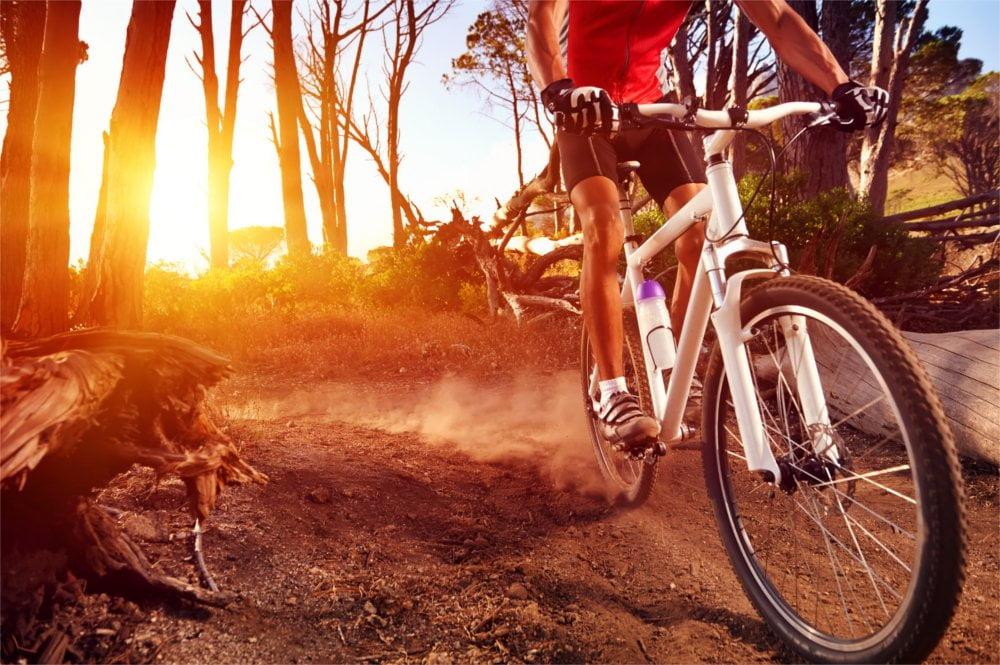 Rower górski – dlaczego warto wybrać go jako pierwszy rower?